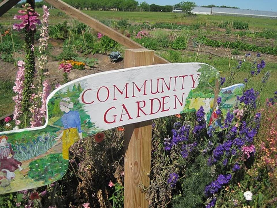 2012 Tue Feb 28th Community Gardening 101 Master