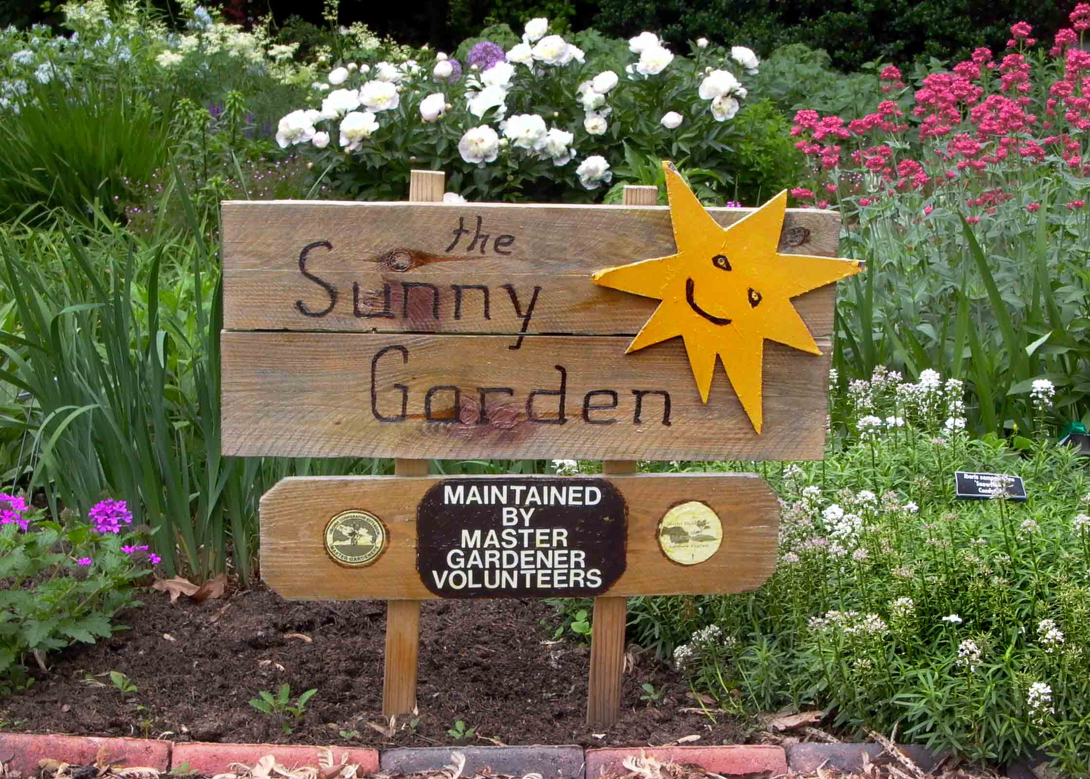 Sunny Garden | Master Gardeners of Northern Virginia