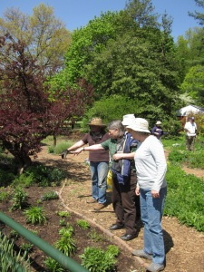 Alex Dickman (in brown shirt) explains her plant choices for Bed 7 to interns Mary Frase and Liz Pittleman in April