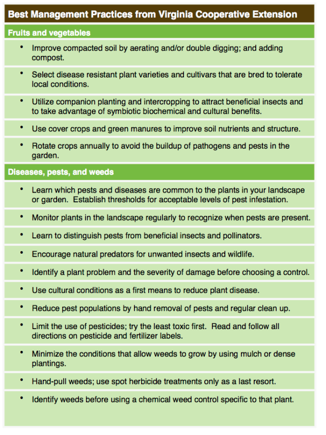 Plants and Materials 3