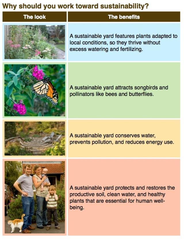 Sustainability basics 1