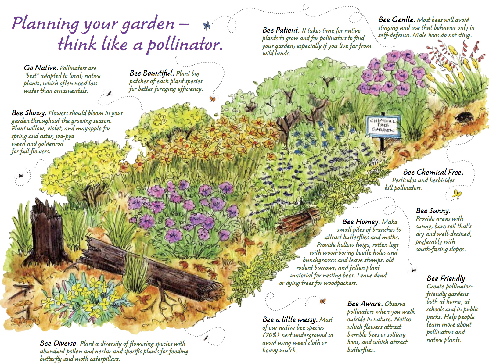 planning your garden think like a pollinator