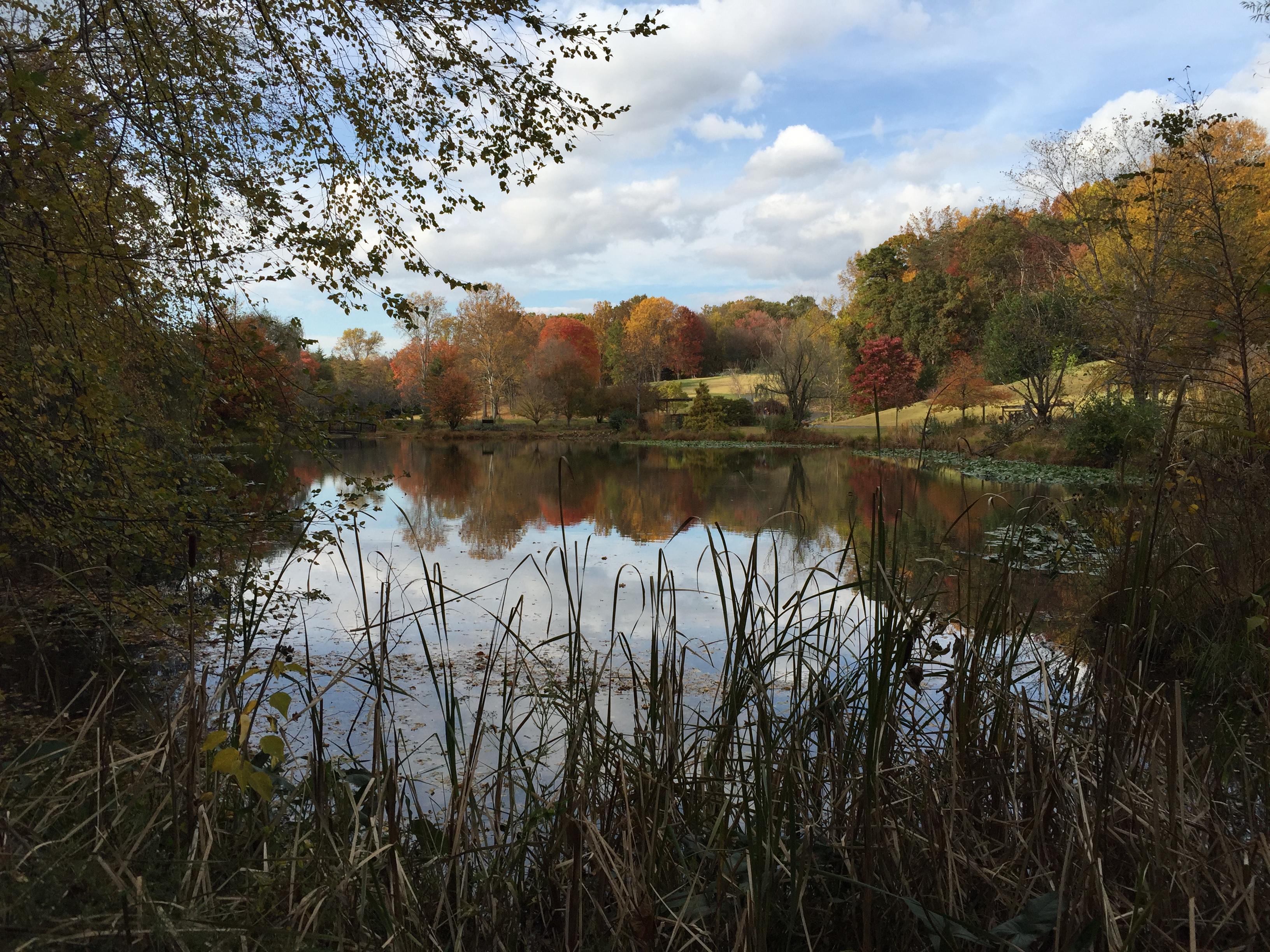 Regional Gardens: Meadowlark Botanical Gardens | Master Gardeners of ...