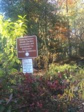 Shade Garden Entrance