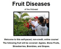 Fruit Diseases of the Midwest