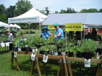 greenspring_plant_sale_2015