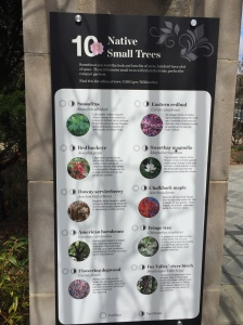 One of the garden's lists of recommended native plants