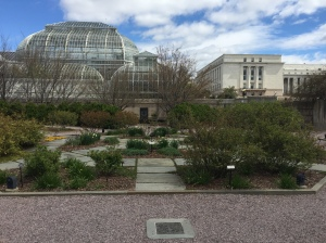 Octagonal beds of the Margaret Hagedorn Rose Garden with the Botanic Garden conservatory beyond