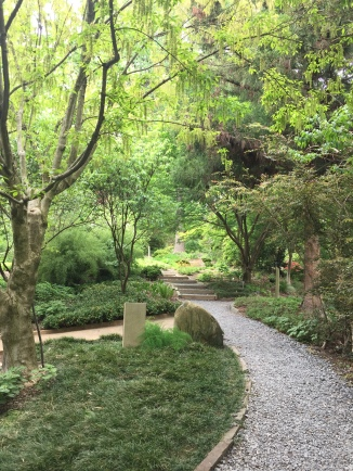 Peaceful paths through the Asian Collections