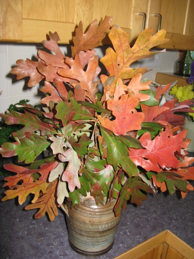 Oak leaf arrangement in vase