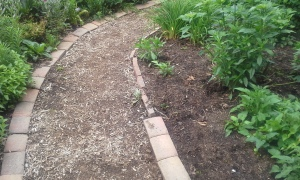Edge stones turned to create path border
