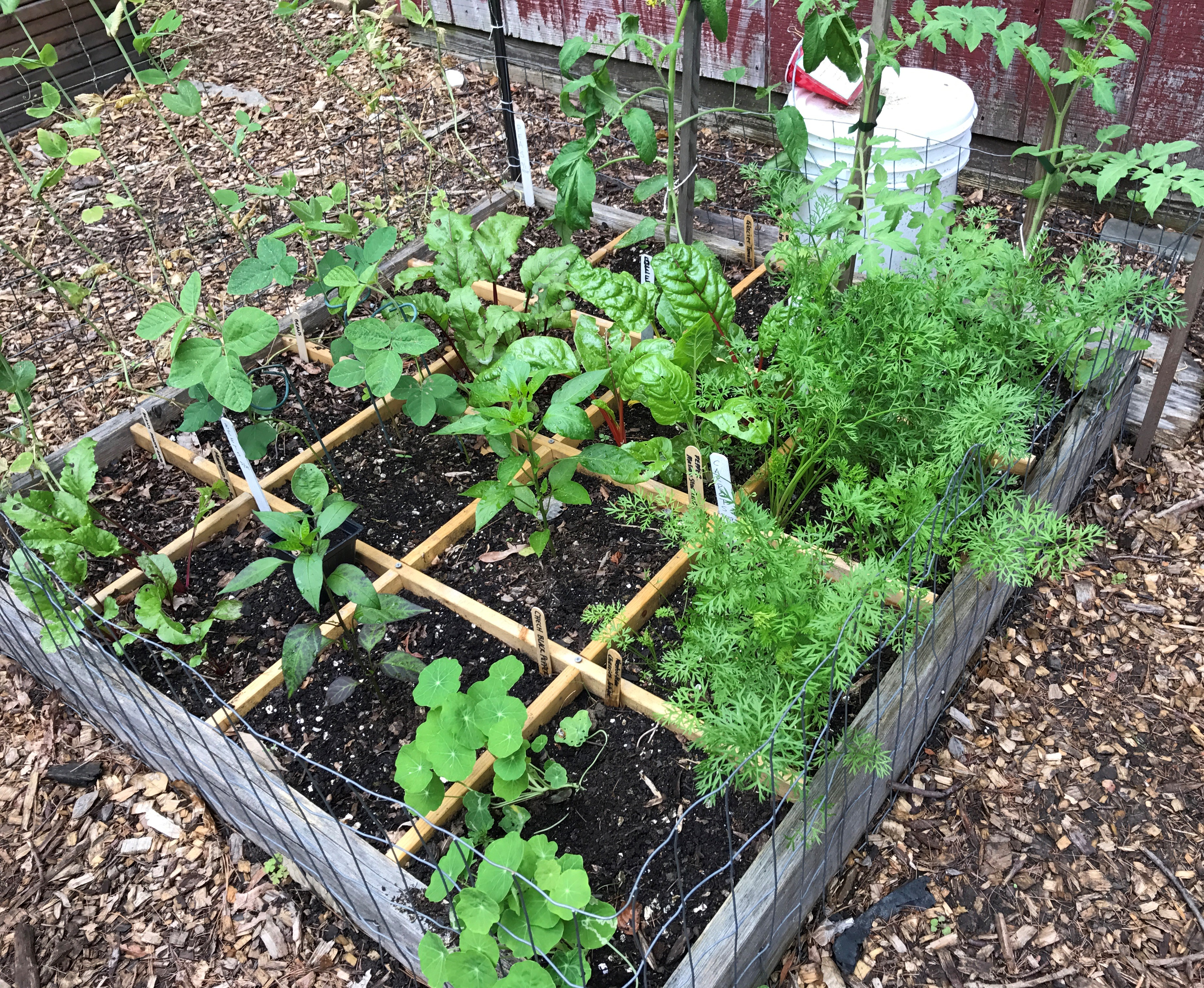 The Square Foot Garden Master Gardeners Of Northern Virginia