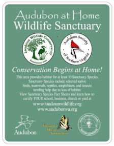 Audubon at Home Wildlife Sanctuary Sign