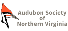 Audubon Sociey of Northern Virignia