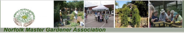 Norfolk Master Gardener Association