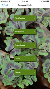 Botanical Help