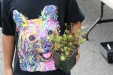 T-shirt and Sedum, Perfect match!