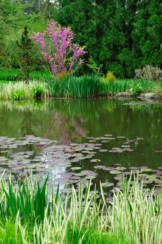 Pond Garden at Chanticleer.