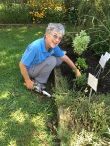 Master Gardener Judy Funderburk at the Glencarlyn Library Community Garden.