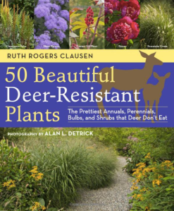 50 beautiful deer-resistant plants: the prettiest annuals, perennials, shrubs, ferns, bulbs, and shrubs that deer don't eat