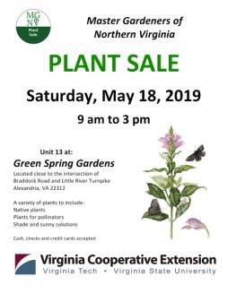 All plants are propagated by Extension Master Gardeners in their own gardens or in our Demonstration Gardens. Unit 13 at Green Spring Gardens Saturday, May 18, 2019 - 9 a.m. to 3 p.m. A variety of plants to include: Native plants Plants for pollinators Shade and sunny solutions Cash, checks and credit cards accepted Located close to the intersection of Braddock Rd. and Little River Turnpike, Alexandria, VA 22312