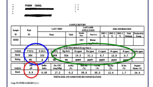 Example of a soil test report. Separate soil samples should be submitted for different parts of the garden--lawn, vegetable, fruits, flower, perennials. Results are calculated based on the pH level and amount of key nutrients required by different plants.
