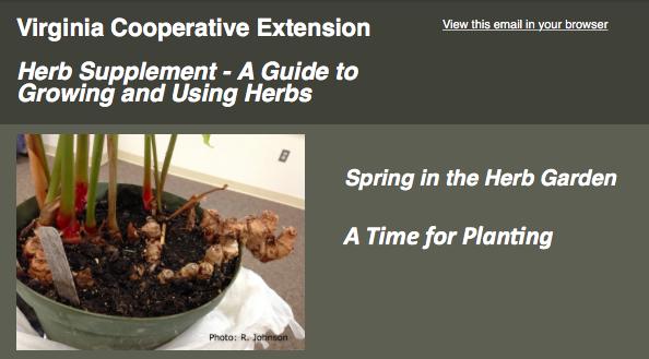 Spring_herb_supplement