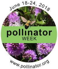 2018 Pollinator Week Logo