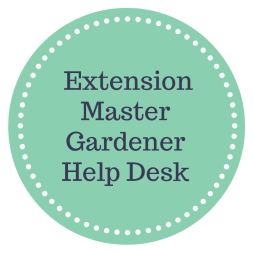 Extension MG Help Desk