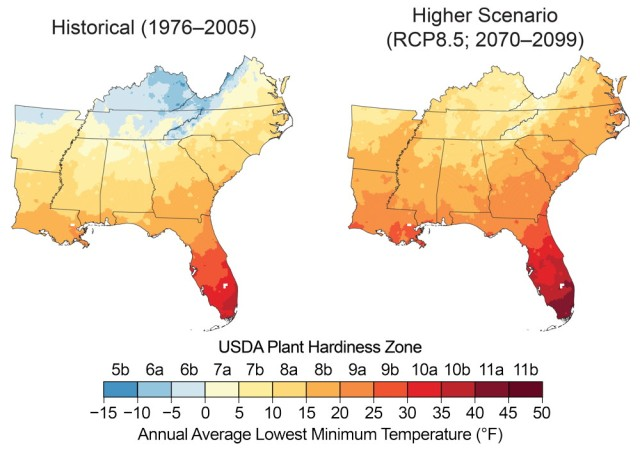 Increasing winter temperatures are expected to result in a northward shift of the zones conducive to growing various types of plants, known as plant hardiness zones. These maps show the mean projected changes in the plant hardiness zones, as defined by the U.S. Department of Agriculture (USDA), by the late 21st century (2070–2099) under a higher scenario (RCP8.5). The USDA plant hardiness zones are based on the average lowest minimum temperature for the year, divided into increments of 5°F. Based on these projected changes, freeze-sensitive plants, like oranges, papayas, and mangoes, would be able to survive in new areas.142 Note that large changes are projected across the region, but especially in Kentucky, Tennessee, and northern Arkansas. Sources: NOAA NCEI and CICS-NC