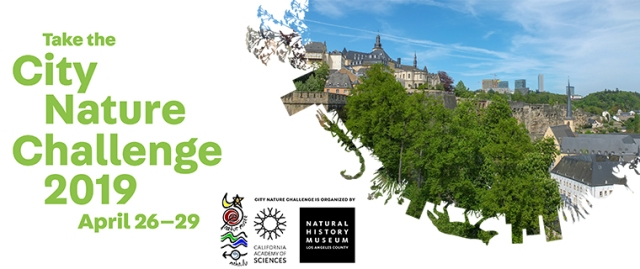 Take the City Nature Challenge 2019 - April 26-29
