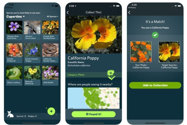 Screenshots from iNaturalist app